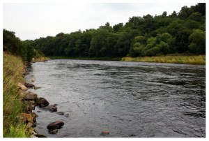 The Dalbreck fishing pool, Wester Elchies, River Spey