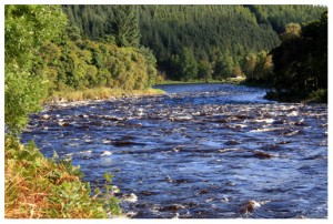 The Daleyghile fishing pool, Wester Elchies, River Spey