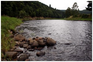 The Delene fishing pool, Wester Elchies, River Spey