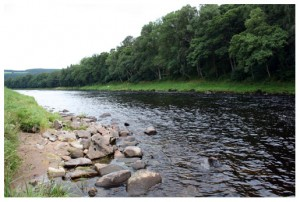 The Brock fishing pool, Wester Elchies, River Spey