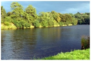The Hendrys Cast fishing pool, Wester Elchies, River Spey