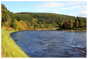 The Pol Ma Cree fishing pool, Wester Elchies, River Spey