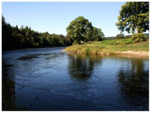 The Pol Sean fishing pool, Wester Elchies, River Spey