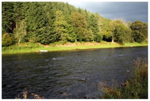 The Rhind fishing pool, Wester Elchies, River Spey